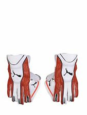 Puma Evo 2 Wicket Keeping Gloves MEN SIZE KU
