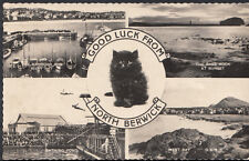 Scotland Postcard - Good Luck From North Berwick  RS3156