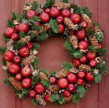 "Williamsburg Style Apple Wreath Pine Wreath Base for Fresh Fruit Decoration 23"""""