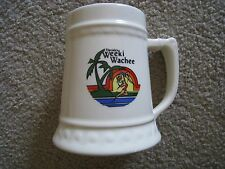 VINTAGE Florida's WEEKI WACHEE - Large Souvenir Mug in GREAT condition!