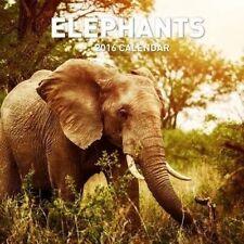 Elephants Elephant 2018 Square Wall Calendar 30x30cm Paper Pocket Post