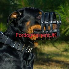 Rottweiler light dog leather muzzle, Black TOP Quality