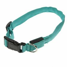 Flashing Dog Collar - Glowing Luminous LED Light Up Safety Hi-Vis Night XXL