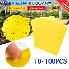10X-50X Yellow Sticky Glue Paper Insect Trap Catcher Killer Fly Aphids Wasp Tape
