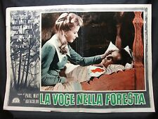 FOTOBUSTA CINEMA -  LA VOCE DELLA FORESTA - PAUL MAY - 1959 - DRAMMATICO - 03