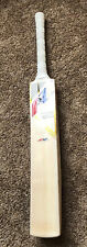 AZ Gold Edition Cricket Bat Grade 1 English Willow