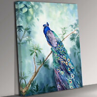 Peacock Bird  Portrait Canvas Wall Art Picture Print