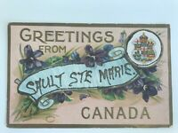 Postcard Greetings From Sault Ste Marie Canada Embossed Canadian Postage c1910