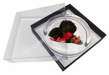 Christmas Poodle Glass Paperweight in Gift Box Christmas Present, AD-POD3PW