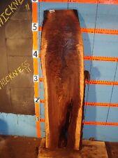 "#9195  1 1/2"" THICK  black walnut live edge slab"