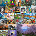 Home Wall Painting By Numbers Kit DIY Hand Painted Canvas Oil Art Picture Craft