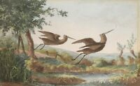 Antique Small Watercolor on Paper Nice Painting Not Signed Showing Flying Birds