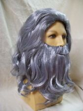Renaissance Man Gray Wig Beard Da Vinci Gandalf Father Time Noah Wizard Biblical