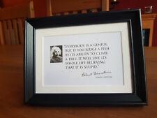 Everybody is a Genius, Framed - Einstein Quote
