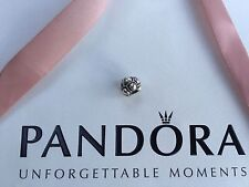 Authentic Pandora Sterling Silver Journey Bead 790401