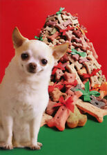 Hallmark Pile of Dog Biscuits Box of 16 Funny Christmas Cards