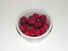 10x Bare rooted Raspberry canes plants - fruit berries for your garden