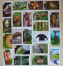 EDEKA WWF Sammelbilder Sticker UNSER WALD 10 Stück