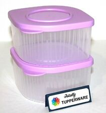 Tupperware Fresh N Cool Set of 2 Modular Containers 2 Cups Each Daisy Purple