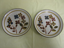 "Noritake Stoneware - October Fest -Salad Plates - 8"". Lot of 2 Plates"