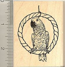 African grey Parrot rubber stamp H9003 Wood Mounted