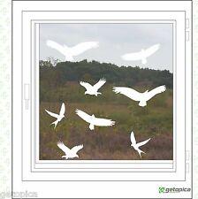 Vögel Aufkleber - Vogelschutz - 8 Stück - Wintergarten- Fenster - weiss Vogel