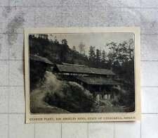 1905 Cyanide Plant, Los Angeles Mine, Chihuahua Mexico