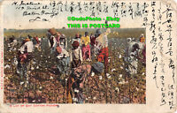 R400298 A Lot of Gay Cotton Pickers. E. C. Kropp. No. 1174. 1905
