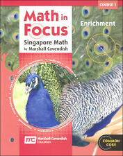 Grade 6 Math in Focus Enrichment Workbook Course 1 6th