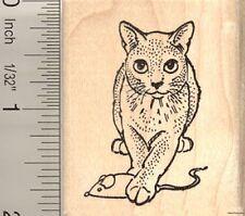 Russian Blue Cat w/ catnip mouse Rubber Stamp G10608 WM