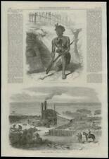 1868 Antique Print NEW ZEALAND Maoris AUSTRALIA Sheep  (196)