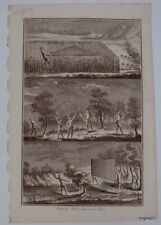 plate TRAPPING Hunting Traps antique PRINT birds nets torches traps