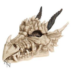 Dragon Skull Box Gothic Stash Horned Fantasy 20cm Long