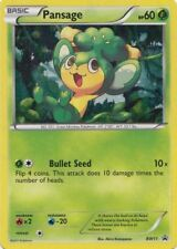 POKEMON PANSAGE BLACK & WHITE BLACK STAR PROMO BW11 ULTRA HOLO CARD NM