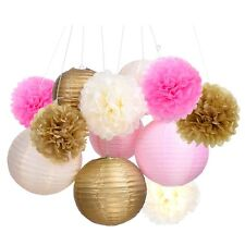 Outus Tissue Paper Pom Pom Flowers and Paper Lanterns Party Decoration, 12 Piece