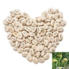 100PCS Hot  DIY Magic Bean Seed Plant Love Gift Growing Message Word IO
