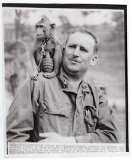 1950-53 Korea Major Belote Teaches Monkey to Throw Grenades News Telephoto