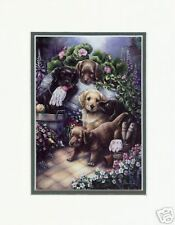 Gardening Puppies by Jenny Newland Animal Print MMS