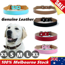 Genuine Cowhide Leather Cow Real Dog Collar Pet Puppy Leads M L leash available