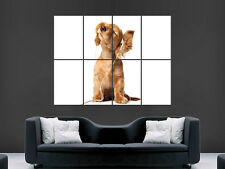 DOG CUTE EARPHONES FUNNY  GIANT WALL POSTER ART PICTURE PRINT LARGE HUGE