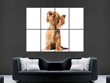 Pared Gigante Lindo Auriculares Gracioso Perro arte cartel impresión de foto grande enorme