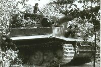 WW II - Photo German ----    Michael Wittmann - Tiger Tank I