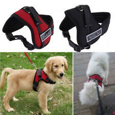 Dog Harness Collar Adjustable Hand Strap Padded Pet Outdoor Seat Belt Security