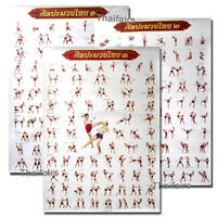 3 POSTERS OF MUAY THAI KICK BOXING MORE THAN 100 TACTICS FOR TECHNICAL EDUCATION