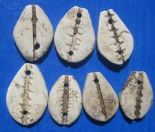 Tomcoins-China Zhou Dynasty Stone cowrie  16-20MM,0.6-1.3g