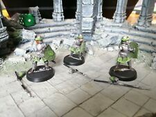 LOTR Warhammer Warriors of Arnor x3