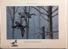 Gillespie, Bob; Wood Ducks And Misty Shadows