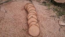 """10x ceniza de madera Tree Slice Boda Eje 13-17cm x 1 """"Rústico Boda"""