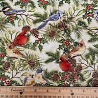 Winter Sanctuary 2 Yards Birds Holly Pine Boughs Cotton Holiday Fabric