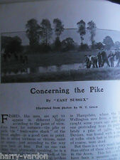 Pike Fishing Netting Horseracing Trainer R Dewhurst Newmarket Rare Articles 1910
